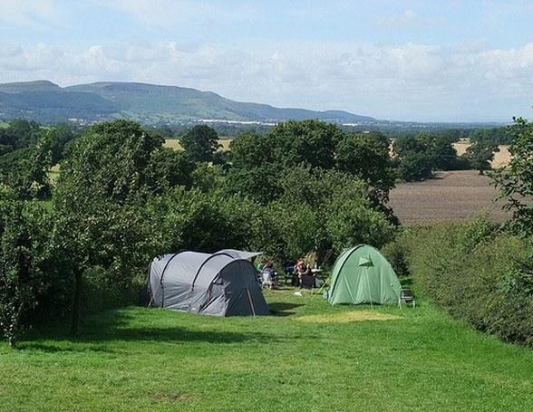 Park Farm Campsite from Tiny Campsites