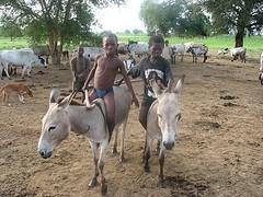 Boys on donkeys in Wiaga, Ghana