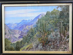 Paintings in the Marianne North Gallery at Kew