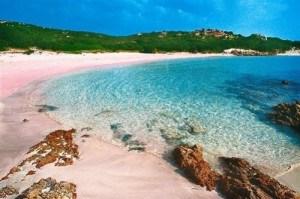 Pink beach Budelli la Maddalena