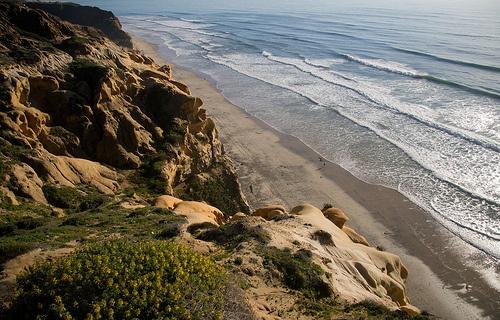 Torrey Pines Reserve in San Diego Photo: Jason Pratt on Flickr