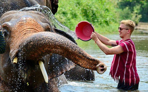 Bathing an elephant Photo: MeltedStories.com