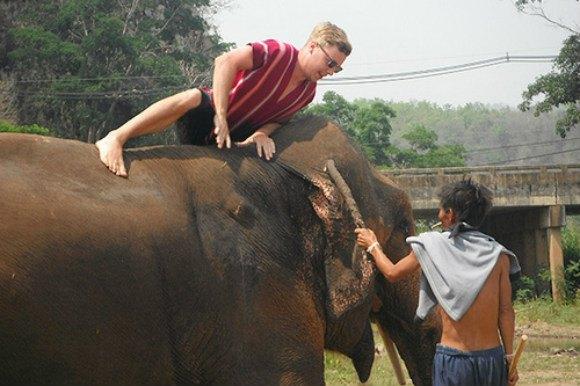 Climbing on the elephant Photo: MeltedStories.com