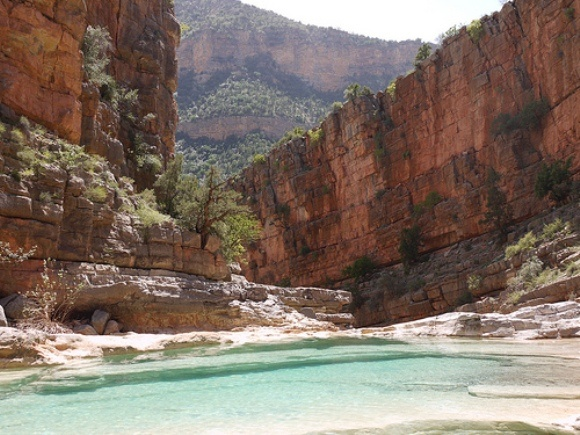 Blue pools at the top of Paradise Valley, Morocco Photo: Heatheronhertravels.com