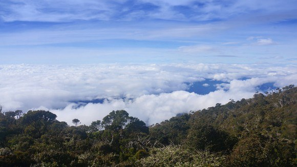 View above the clouds from Laban Rata