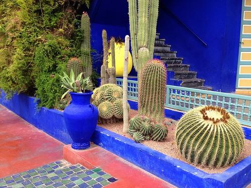 The Majorelle Gardens in Marrakech Photo: Heatheronhertravels.com