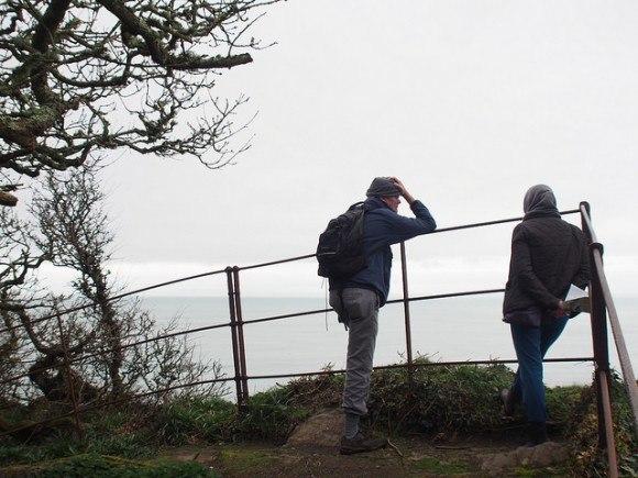 Cliff Walk near Clovelly Village, North Devon