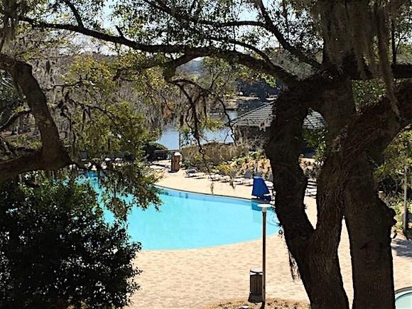 Sawgrass Marriott Pool View
