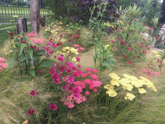 Austin Garden at RHS Hampton Court Flower Show Photo Heatheronhertravels.com
