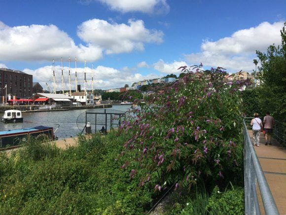 Walk along Bristol Harbour