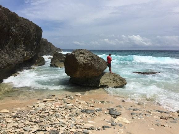 North Coast of Aruba Photo: Heatheronhertravels.com