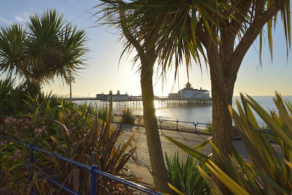 The beach at Eastbourne Photo: Visit Eastbourne