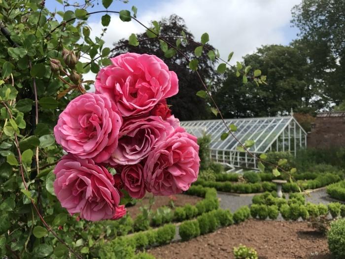 Rose garden at Backwell House Photo: Heatheronhertravels.com