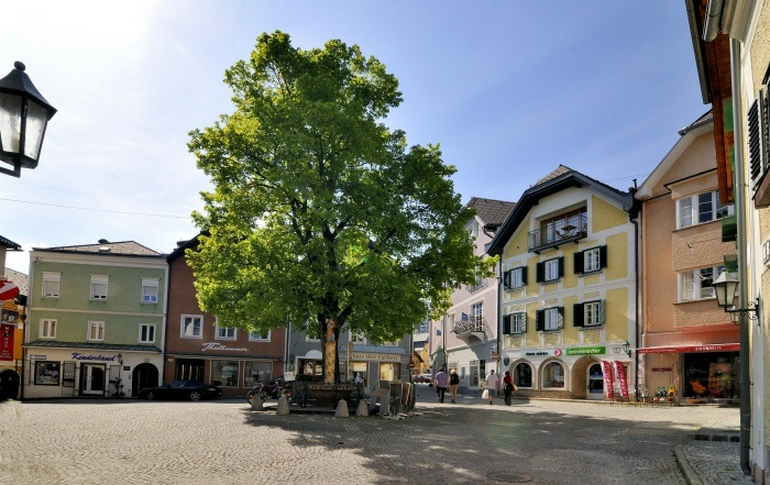 Medieval houses in Gmunden