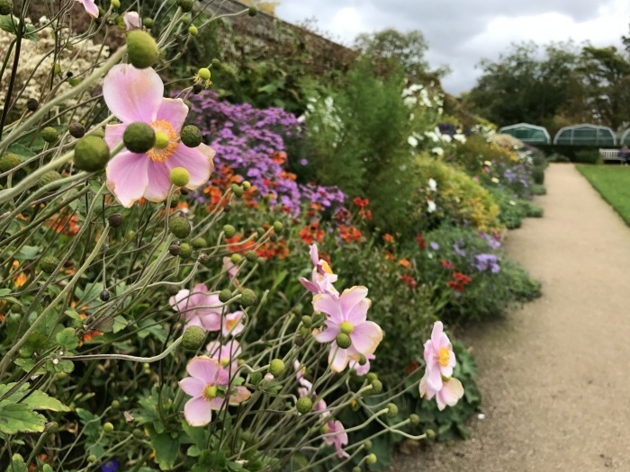 Oxford Botanic garden photo - weekend in Oxford Heatheronhertravels.com