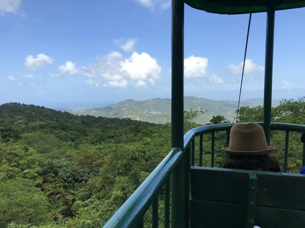 Rainforest adventure in St Lucia Photo Heatheronhertravels.com