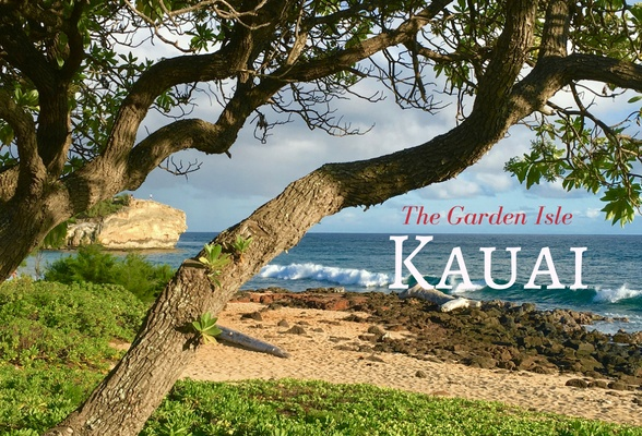 Read about Things to do on Kauai