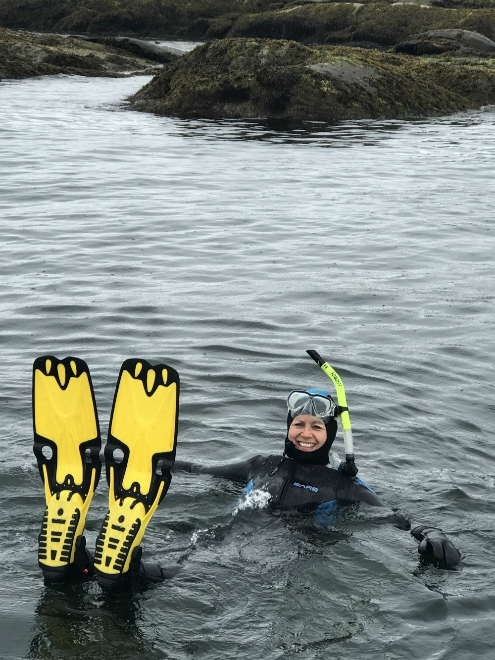 Snorkeling with seals in Nanaimo Photo: Heatheronhertravels.com