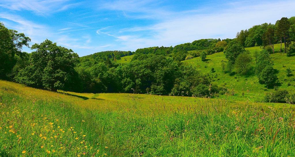Golden Valley near Stroud Photo: Richard Szwejkowski