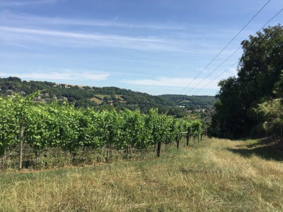 Woodchester Valley Winery