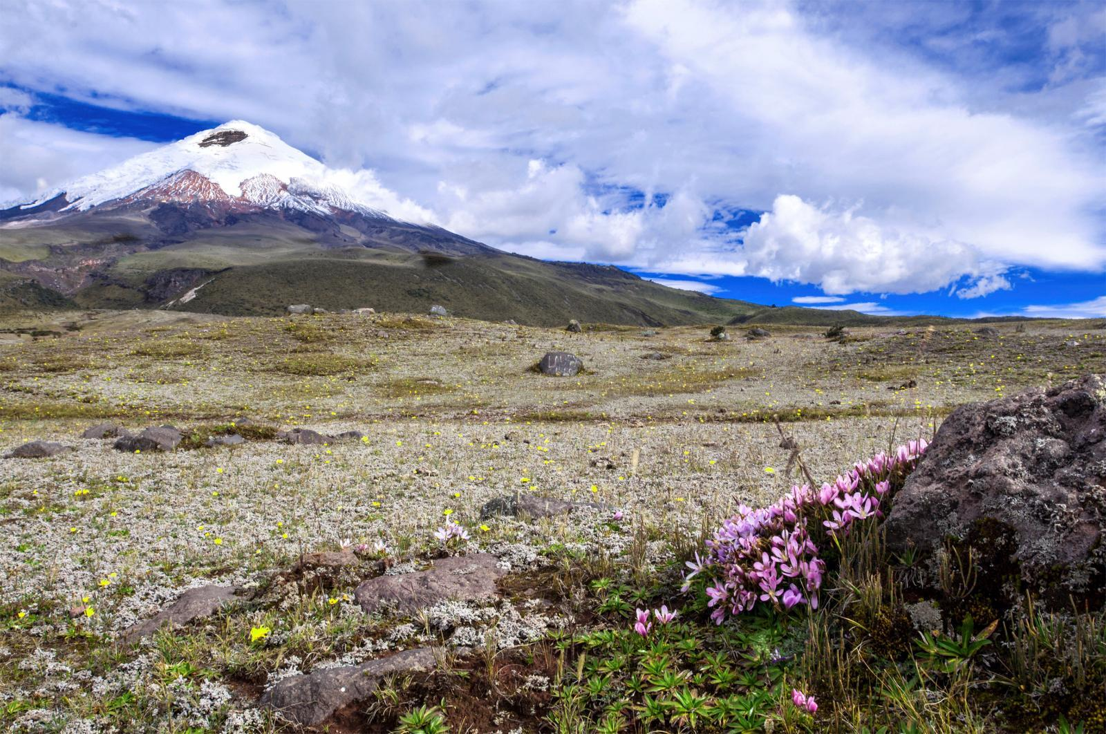 Andes to Amazon in Ecuador with Exodus