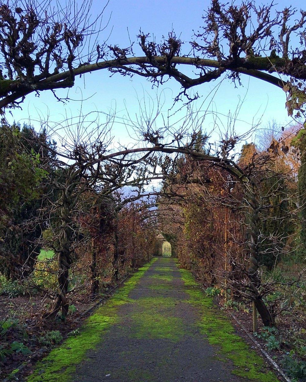 Winter garden at Bruern Cottages - Photo Heatheronhertravels.com