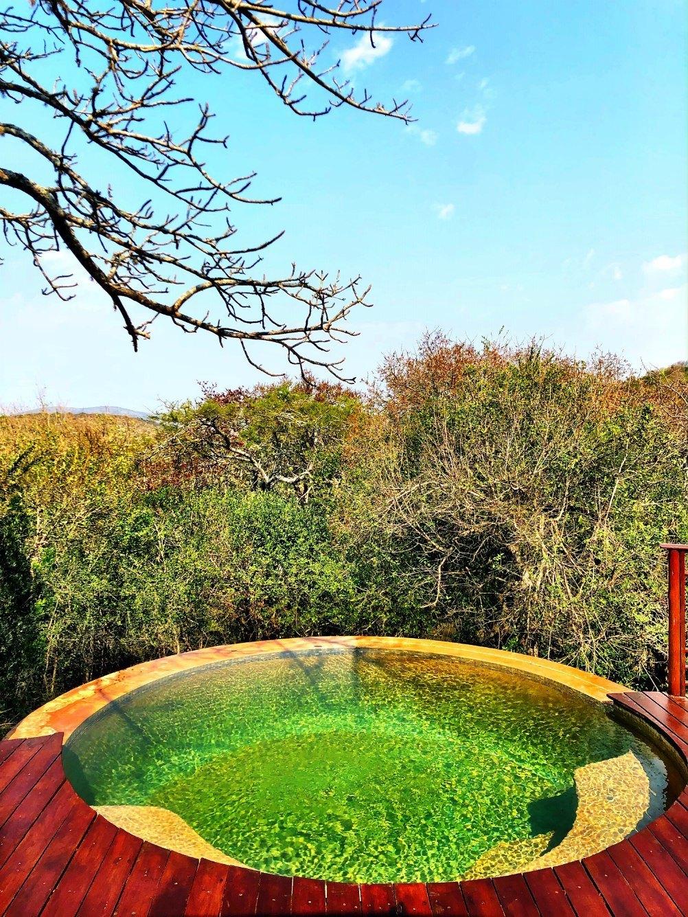 Pool in Thanda Game Reserve South Africa Photo Amanda O'Brien