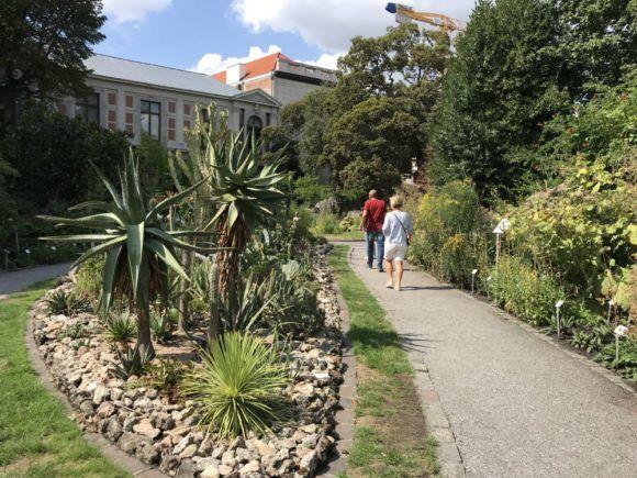 Things to do in Antwerp - Botanic Garden in Antwerp Photo Heatheronhertravels