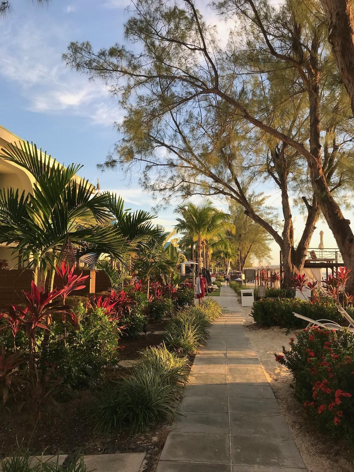 Beachfront Gardens at Westin Grand Cayman Seven Mile Beach Resort