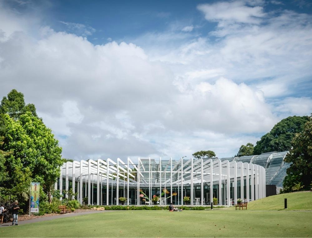 Sydney Botanic Garden Ethan Lee on Unsplash