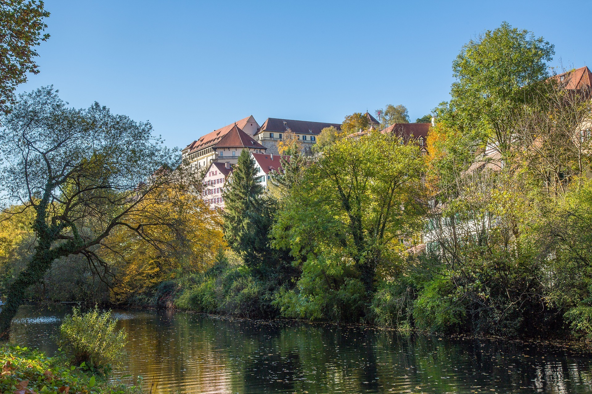 Schloss Hohen Tübingen Germany Photo Maxmann on Pixabay