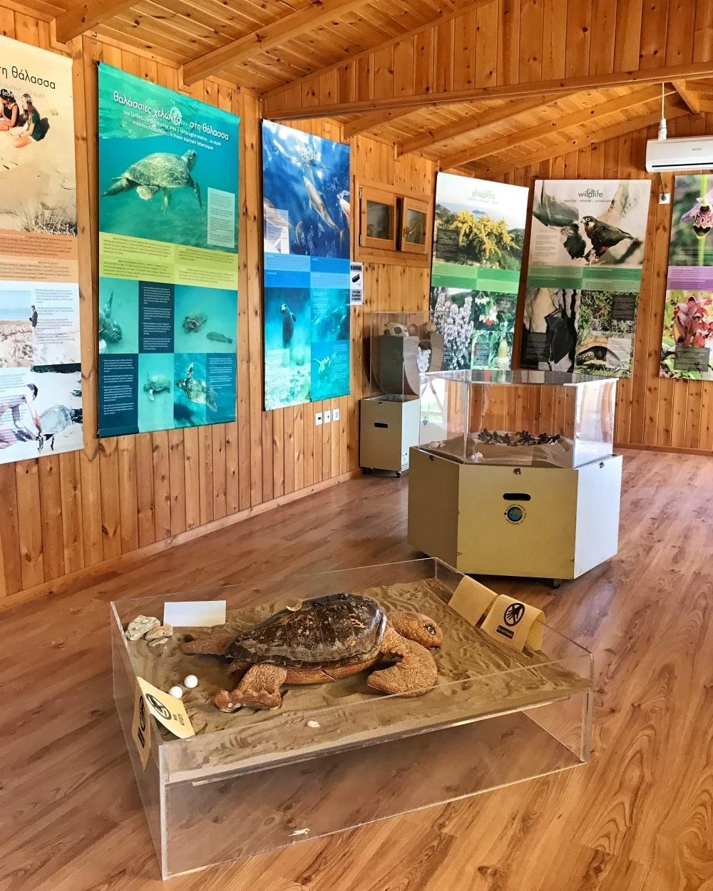 Turtle information centre at Gerakas Zakynthos Photo Heatheronhertravels.com