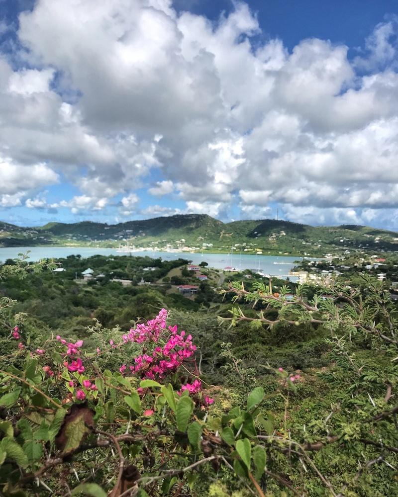 Middle Ground Trail Antigua Photo Heatheronhertravels.com