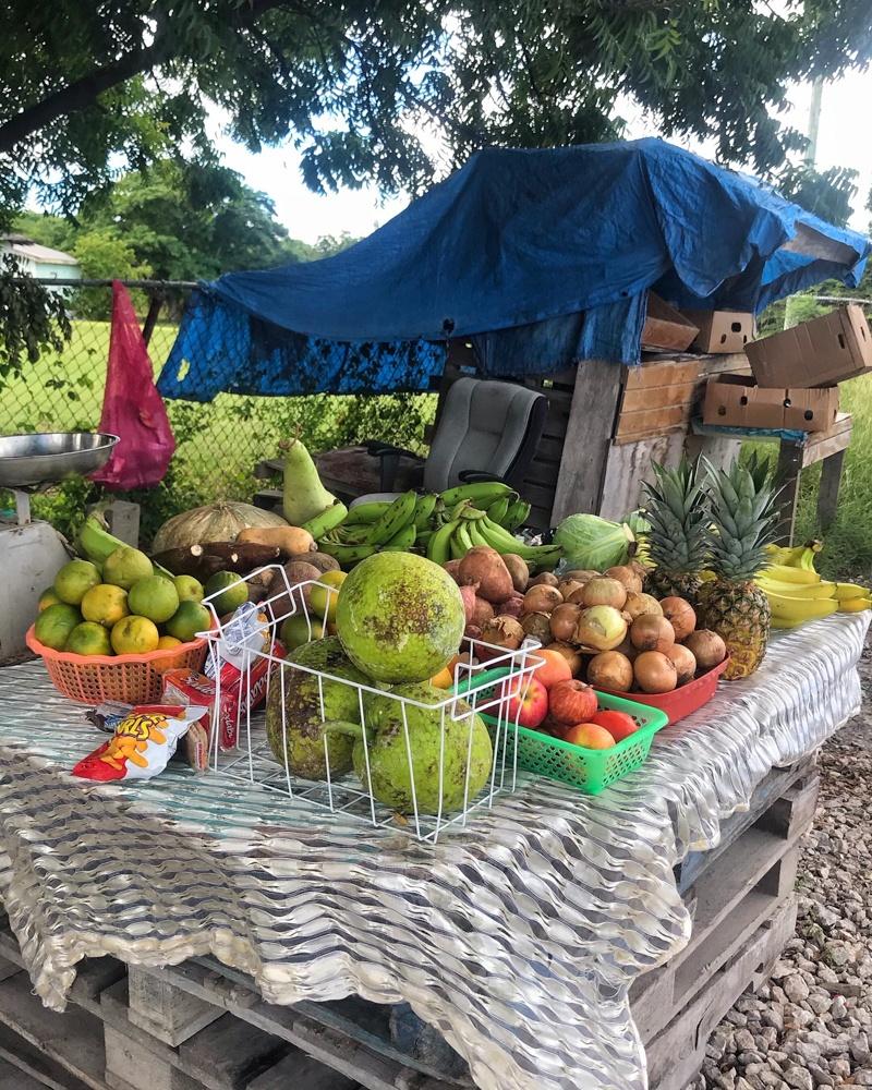 Roadside fruit stall Antigua Photo Heatheronhertravels.com