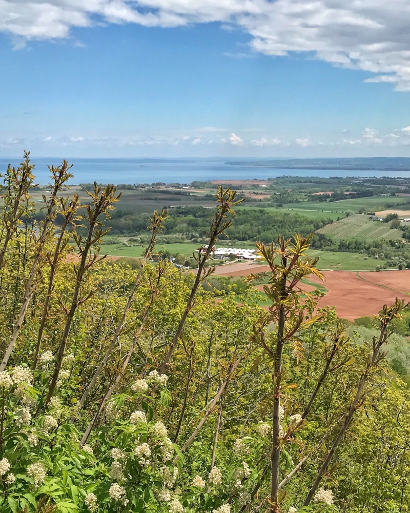 The Lookoff - Annapolis Valley in Nova Scotia, Canada Photo Heatheronhertravels.com