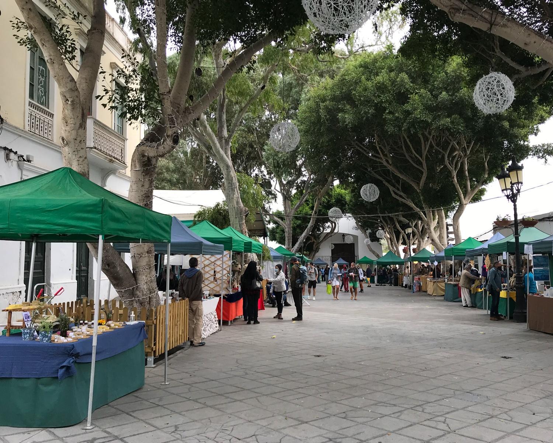 The market at Haria Lanzarote - near Fincas de Arrieta Photo Heatheronhertravels.com