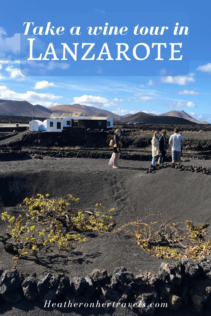 Lanzarote wines and vineyards