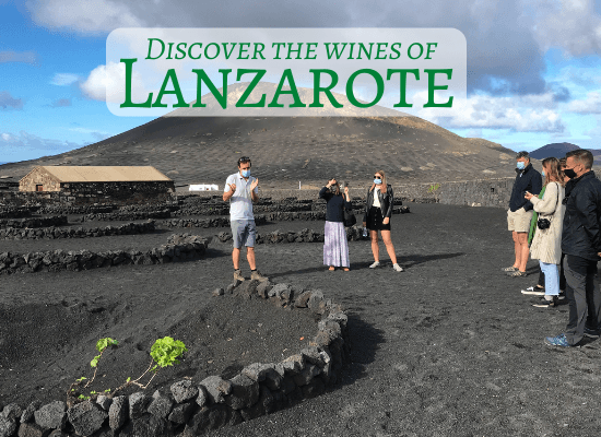 Discover the wines of Lanzarote